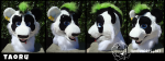 [YES] Taoru Panda Head by TwinkyArts