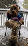 [YES] Airedale Terrier Fullsuit by Blue Harbor Creations