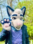 [YES] Cass the Coyote Partial by Seabreeze Fox