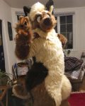 [OK] Cedar Hyena/Husky Hybrid Fullsuit by West's Custom Creations