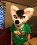 [YES] Carrots the Fox-Cat Mini Partial by HyenaVomit