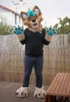 [YES] Noryx the Jackal Partial by Thunderhowl Studios
