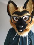 [NO] TJ Fursuit Head by Dorky Dog Suits