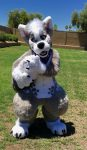 [OK] Wolfy Digitigrade Fullsuit by Messy Monster Mutts