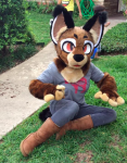 [YES] Fudge Caracal Partial by Lemonbrat
