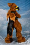 [YES] Vook the Golden Eagle Gryphon by DynamiCat Studio