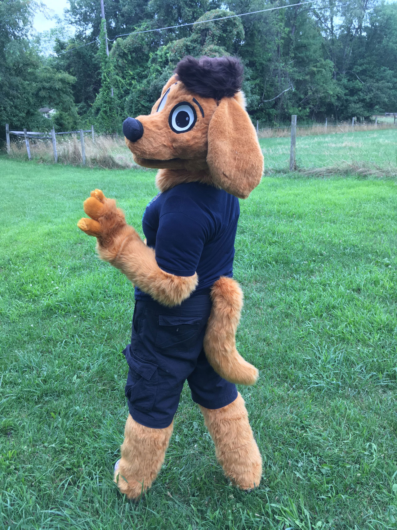 [YES] Tod Puppy Partial by CantofTogs
