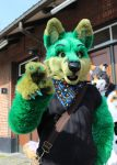 "[YES] Kurrt ""Greenfox"" Keiran by Alpha Dogs"