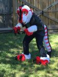 [YES] Cardinal Raptor Partial by Creature Haven