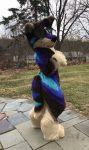 [YES] Echo the Maned Wolfdog Fullsuit by King Krow Co