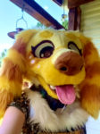 [YES] Honey the Golden Retriever Dog Mini Partial, by PyropeCostumes