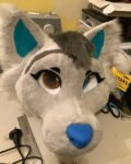 [NO] Snowpaw the Folf Partial Suit by Cosmic Creations Fursuits