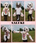 [YES] Saluki Persian Greyhound Partial by Nijak Play Art