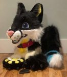 [YES] Sam the Wolfdog Partial by Thread's Workshop