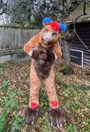 [YES] Bailey Brown Bear by Ritz Costumes